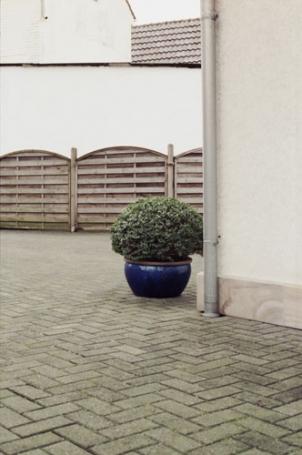 http://ruth-niehoff.de/files/gimgs/th-28_alleinstehend_05.jpg