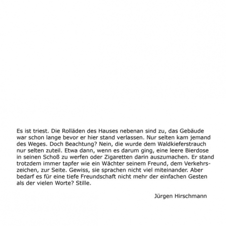 http://ruth-niehoff.de/files/gimgs/th-37_web_text_waechter_02_klein.jpg
