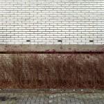 http://ruth-niehoff.de/files/gimgs/th-25_stadtbummel_22.jpg